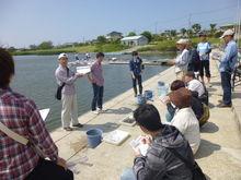 佐鳴湖についてのお話を真剣に聞く当社参加者達