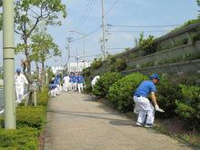 浜北工場 会社前の道路の草取り、ゴミ拾いの様子