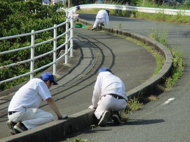 本社/技術研究所/生産技術センター 外周道路の草取りやゴミ拾いをしました