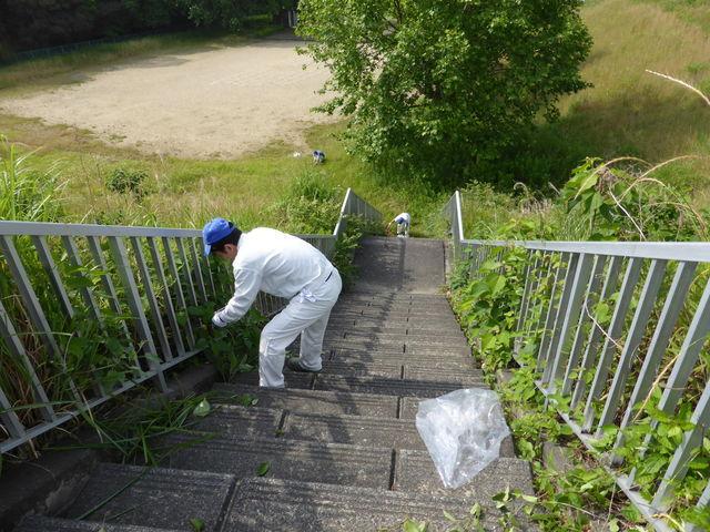 細江工場 近隣公園の草取りやゴミ拾いをしました