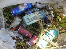 ポイ捨てゴミがたくさんありました