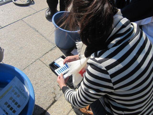 溶存酸素のパックテスト後、色見本と比較して水の中の酸素の量を確認