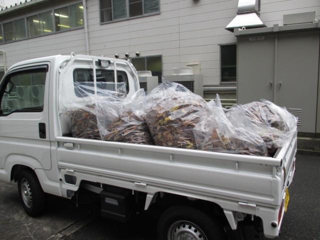 トラックいっぱいの枯葉を回収しました!