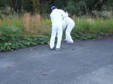 公園の清掃(技術研究所)