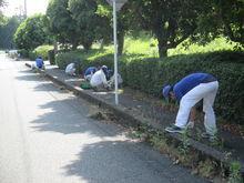 技術研究所 周辺道路や公園の草刈りやゴミ拾いをしました