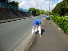 本社/細江工場 周辺道路の草刈りやゴミ拾いをしました