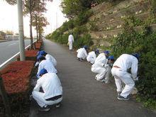 【浜北工場】交通量も樹木も多い幹線道路にはゴミも多かったです