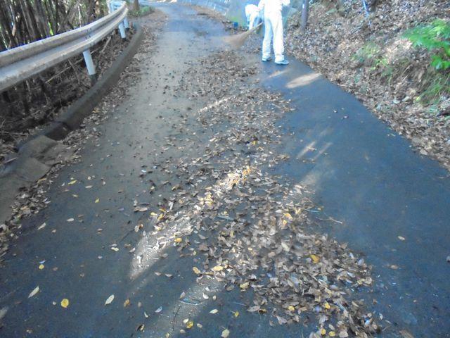 【細江工場】側溝にも落ち葉がいっぱいでした