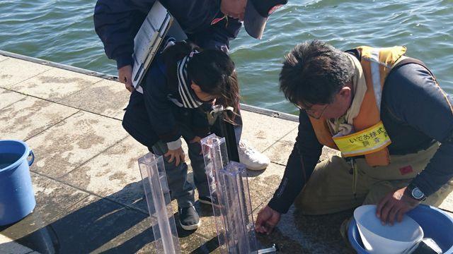 透明度計で湖水の透明度をチェック
