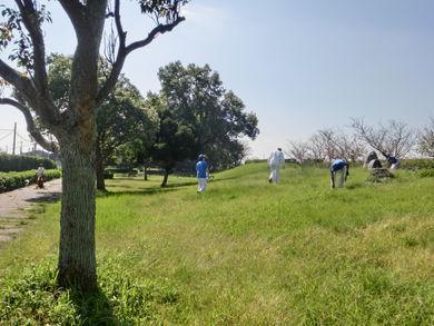 天竜川に沿って南北に長く、緑がとても多い公園です